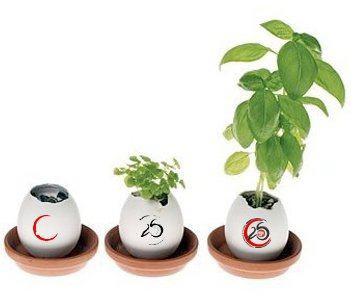 """""""Creciendo"""", programa de trece cursos y talleres de formación en la Universidad Popular"""